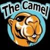THE CAMEL SPORTS BAR &KITCHEN