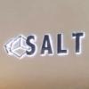 南京SALT